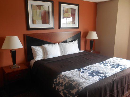 Motel 6 Indianapolis - Airport: King Room