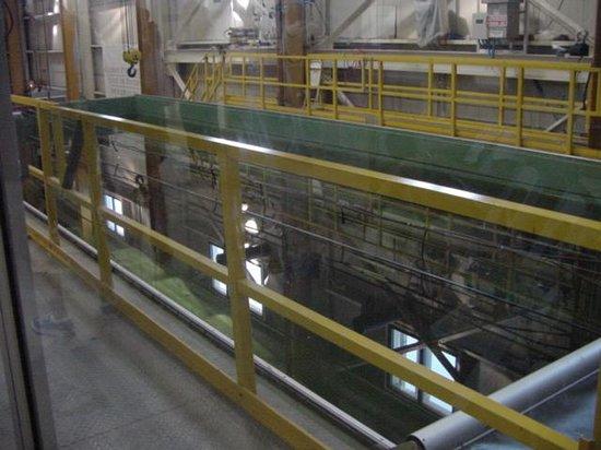 warren lasch conservation center view through the wall