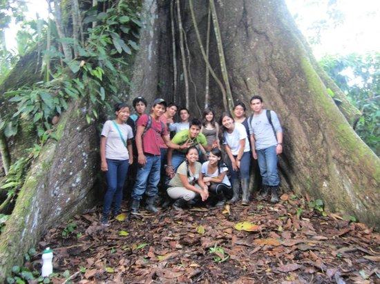 Yachana Lodge - UPDATED 2017 Prices & Reviews (Ecuador/Napo ...