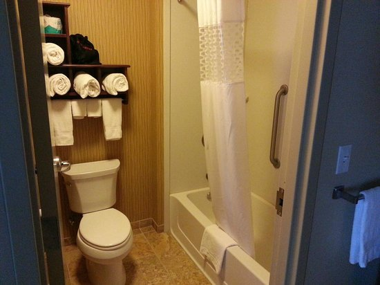 Hampton Inn & Suites Grand Forks: bathroom