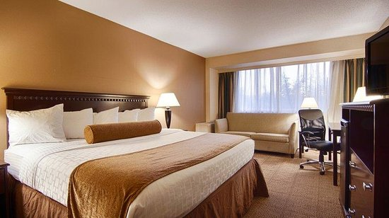 Ramada East Syracuse Carrier Circle: King Guest Room
