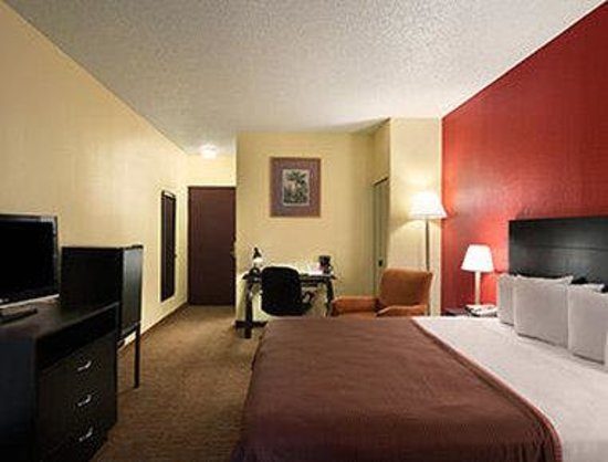 red roof inn clearwater airport florida hotel reviews. Black Bedroom Furniture Sets. Home Design Ideas