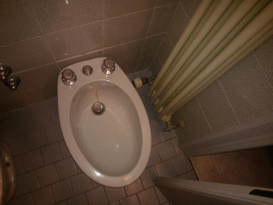 Hotel Marylise: Bidet che cola acqua rugginosa. Inutilizzabile, perché troppo vicino al termosifone