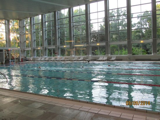 The pool that 39 s part of the attached gym picture of hilton frankfurt city centre frankfurt - Pool frankfurt ...