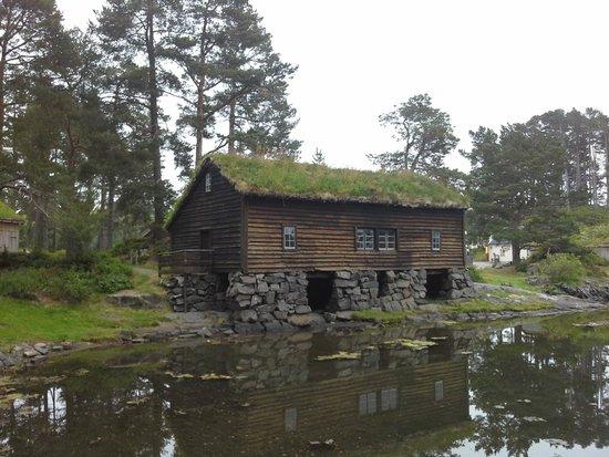 Tourist Information Office Alesund: uma das casas a beira de um lago