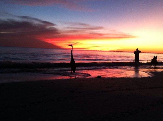 Cornerstone Beach Resort : beautiful sunsets