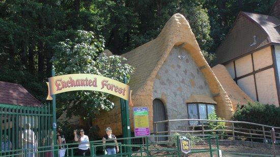 Enchanted Forest Theme Park : Park entrance - just follow the path