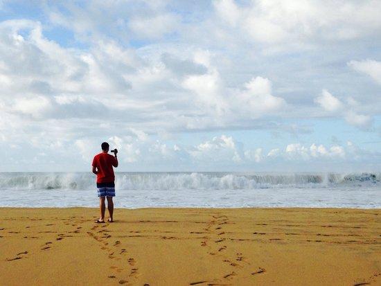 Hanalei Beach: Watching waves