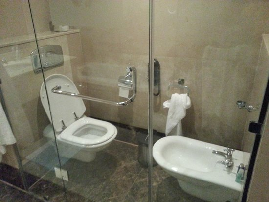 Wyndham Grand Regency Doha: Toilet has no shattaf hose