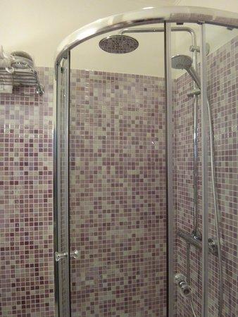 Grand Hotel Dechampaigne: シャワー