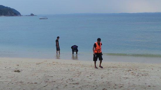 Gem Island Resort & Spa: snorkelling