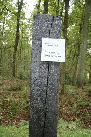 Kamp Westerbork: De houten palen langs de route.