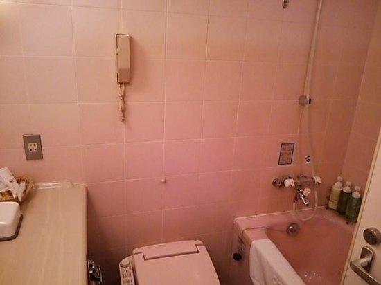 Solaria Nishitetsu Hotel: バスルーム
