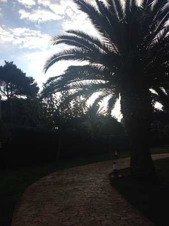 Aparthotel Club Andria: Walk to breakfast!