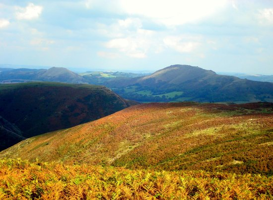 Brookfields Guesthouse: Beauty of the Long Mynd