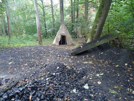 Weald & Downland Living Museum: Charcoal Burners Camp