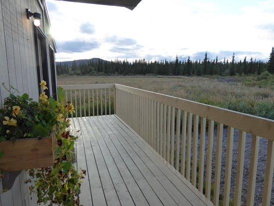 Healy, Αλάσκα: Blick aus dem Zimmer