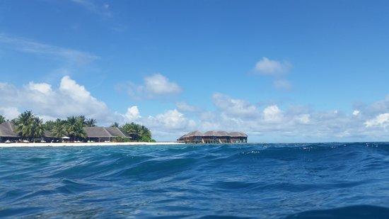 Vakarufalhi Island Resort : While snorkeling