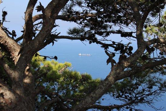 Santa Fa 2019 >> vue sur la baie de mers el kebir - Photo de Fort Santa Cruz, Oran - TripAdvisor