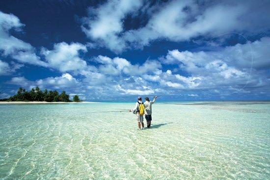 Four Seasons Resort Seychelles at Desroches Island: Fish