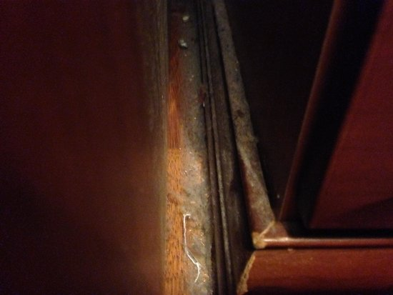 Argyll Hotel : Dust by the side of the desk