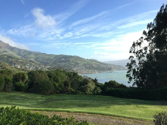 Akaroa TOP 10 Holiday Park: You can even see this from the kitchen