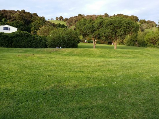 Akaroa TOP 10 Holiday Park: Beautiful lawn/landscape near playground
