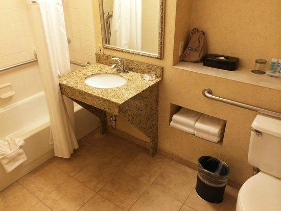 Wyndham Boston Beacon Hill: Clean bathroom.