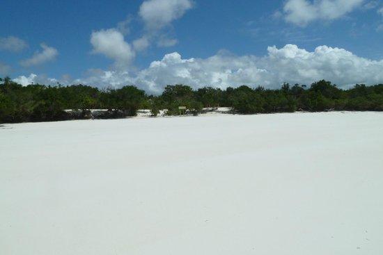 Ras Michamvi Beach Resort : Wunderschöner weiser Sand