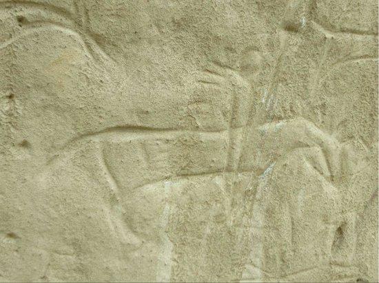 White Mountain Petroglyphs: One of the petroglyphs