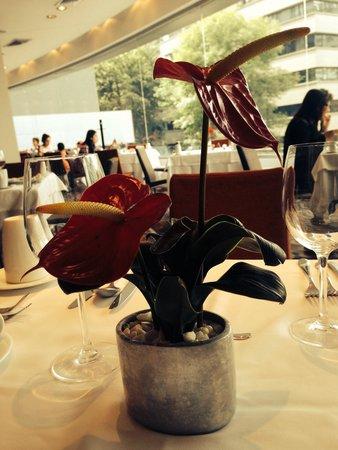 Hotel Estelar Milla de Oro: Las bellas flores del dasuyuno