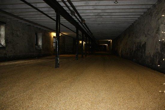 Highland Park Distillery: Malting floor