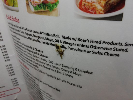 Red Roof Inn Parsippany: Bug on the menu
