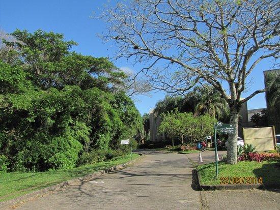 fotos jardim botanico porto alegre : fotos jardim botanico porto alegre: interior do Jardim Botânico – Foto de Jardim Botânico, Porto Alegre