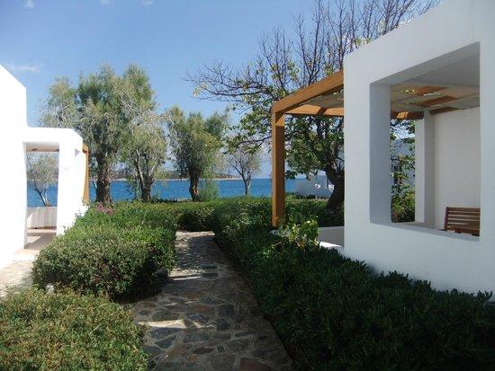 Minos Beach Art Hotel Beachfront Bungalows