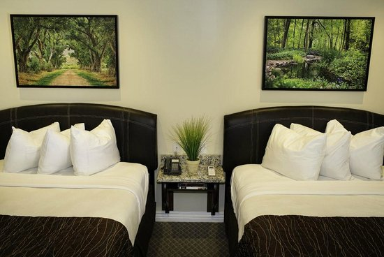 Primrose Inn and Suites: Standard Queen Room