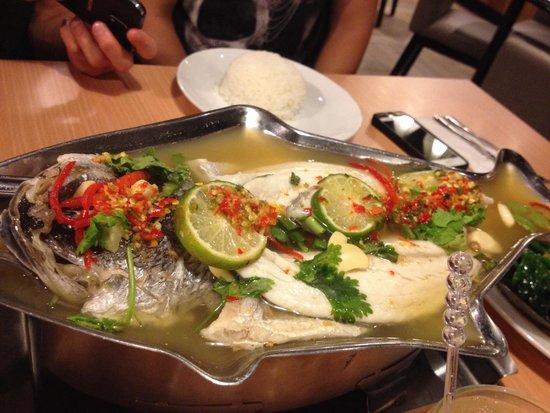 Thai Steam Fish Picture Of Absolute Thai Ksl Johor Bahru Tripadvisor