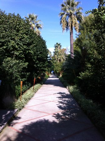 Grand Hotel Cocumella : Path to pool and belvedere