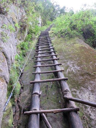 Putucusi Mountain: ladders