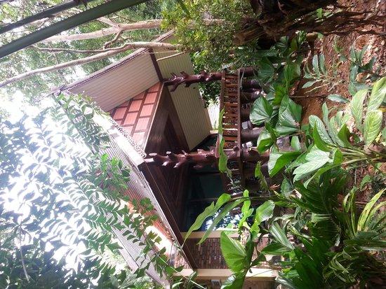 Khao Sok Las Orquideas Resort: Nuestra villa