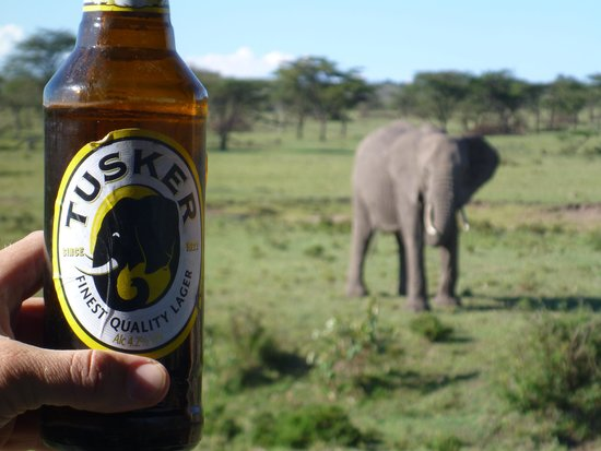 Great Plains Conservation Mara Plains Camp : The sundowners went over well.