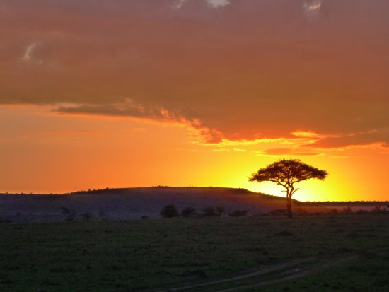 Great Plains Conservation Mara Plains Camp : The landscapes were fantastic.