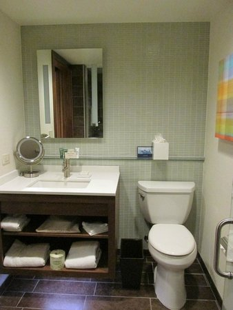 Hilton Columbus Downtown: Sink & Commode