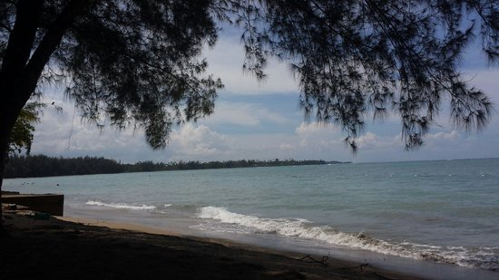 Dorado Beach: Local family beach that's a great way to experience the real city!