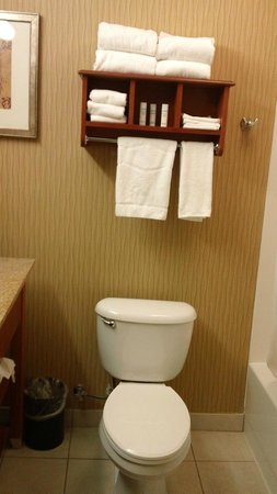 Hampton Inn St. Joseph : Bathroom