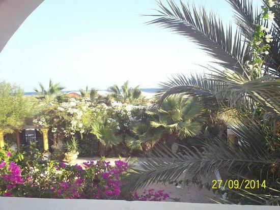 Hotel Tamaris: vue de la chambre