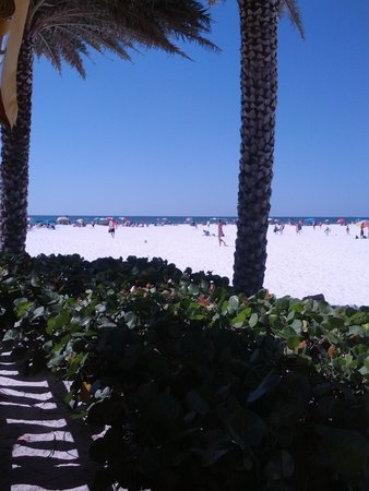 Frenchy's Clearwater Beach Restaurants: View from Frenchy's