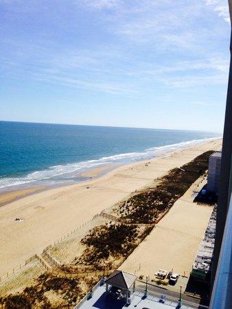 大洋城海灘希爾頓套房飯店照片