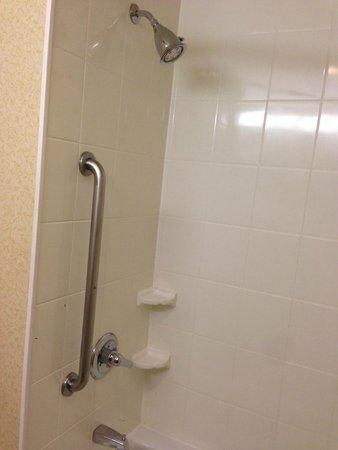 Fairfield Inn New York LaGuardia Airport/Astoria : Shower/Tub Combo