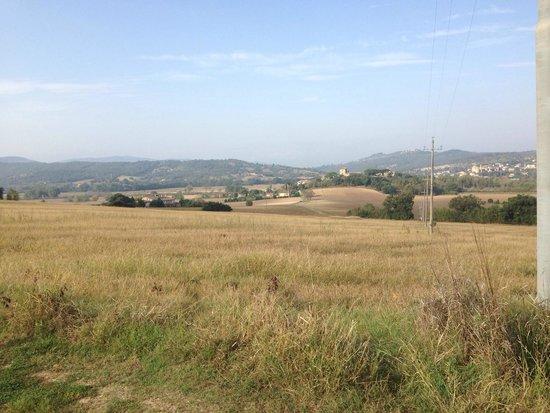 Castiglione della Valle, Italien: Zicht op La Serena